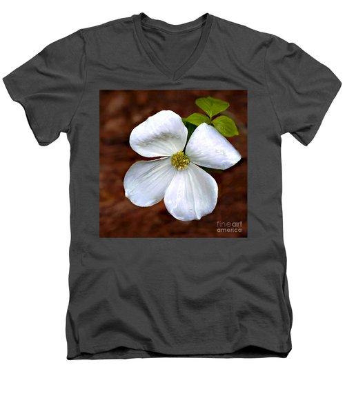 Dogwood Blossom Yosemite Men's V-Neck T-Shirt