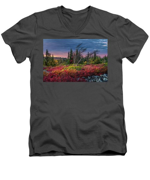 Dolly Sods Windswept Sunset Men's V-Neck T-Shirt