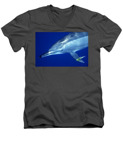 Dolphin Men's V-Neck T-Shirt