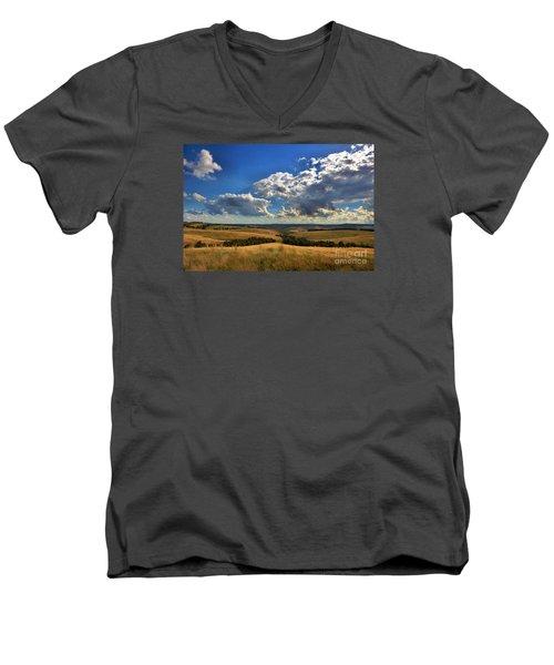 Donny Brook Hills Men's V-Neck T-Shirt by Joy Watson