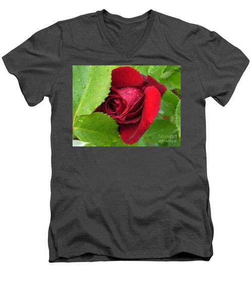 Don't Cry For Me Rosanna Men's V-Neck T-Shirt