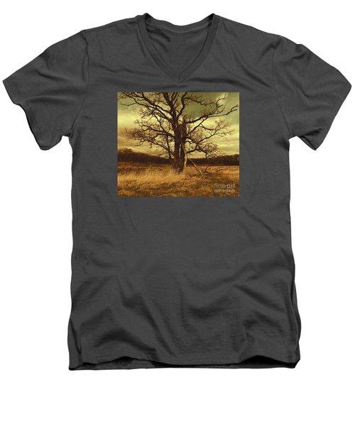 Dormant Beauty Men's V-Neck T-Shirt
