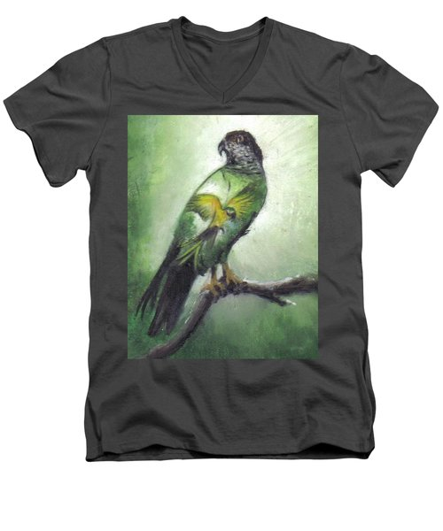 Double Vision Men's V-Neck T-Shirt by Catherine Swerediuk
