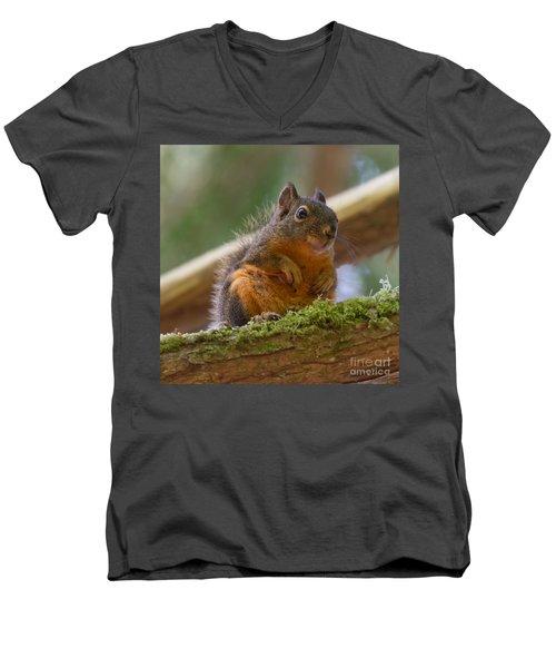 Douglas Squirrel Men's V-Neck T-Shirt by Paul Rebmann