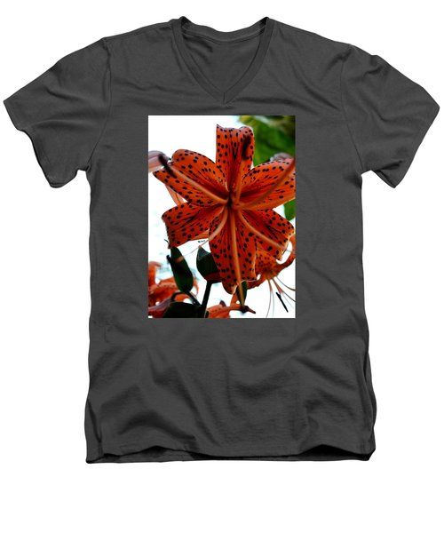 Dragon Flower Men's V-Neck T-Shirt