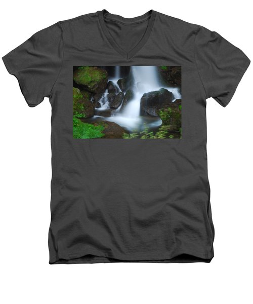 Dragon Head Falls Men's V-Neck T-Shirt