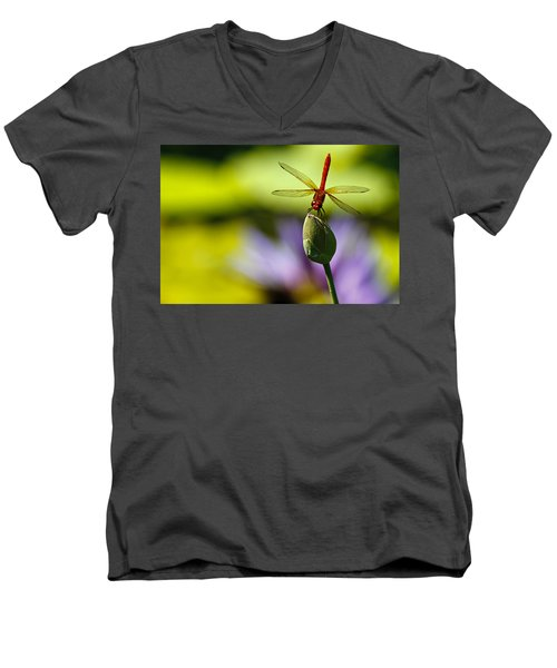 Dragonfly Display Men's V-Neck T-Shirt
