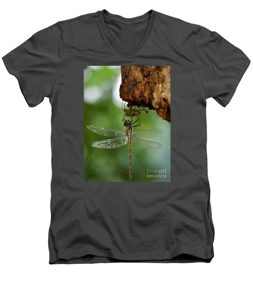 Men's V-Neck T-Shirt featuring the photograph Dragonfly by Jane Ford