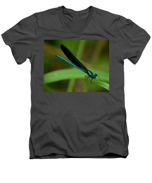 Dragonfly  Men's V-Neck T-Shirt