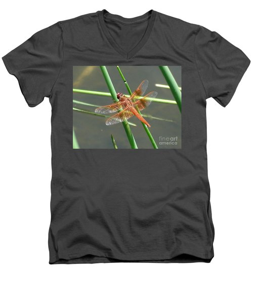 Dragonfly Orange Men's V-Neck T-Shirt