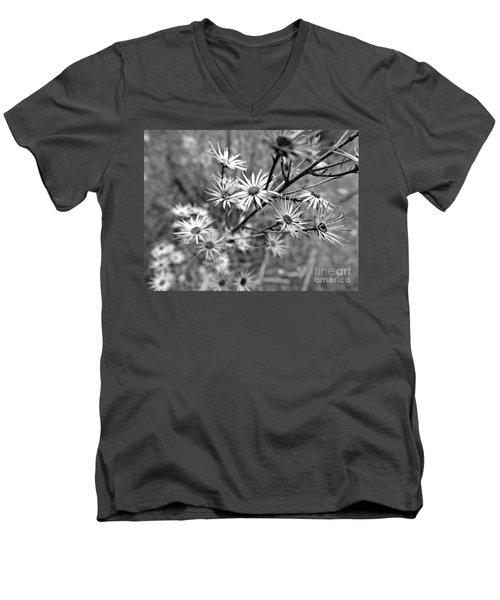 Dried Out Perfection Men's V-Neck T-Shirt