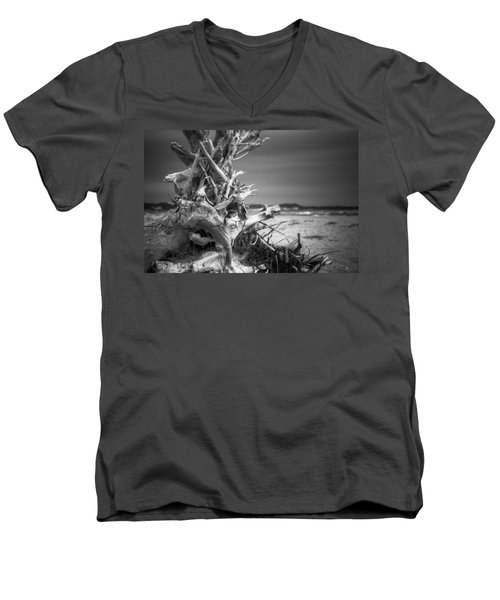 Driftwood At Race Point Men's V-Neck T-Shirt
