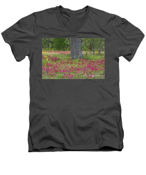 Drummonds Phlox And Crown Tickweed Central Texas Men's V-Neck T-Shirt