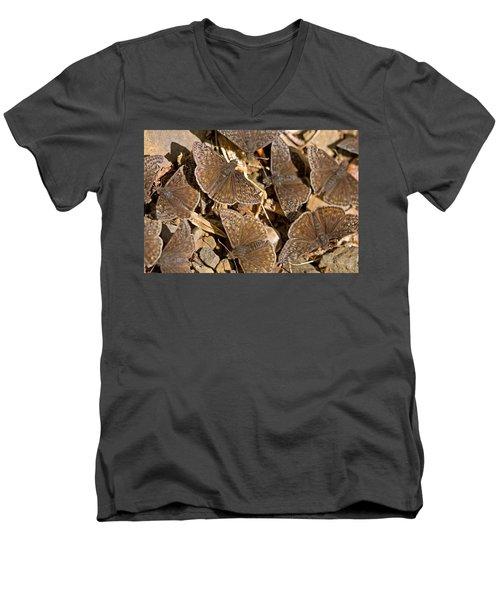 Duskywing Butterflies Men's V-Neck T-Shirt by Melinda Fawver