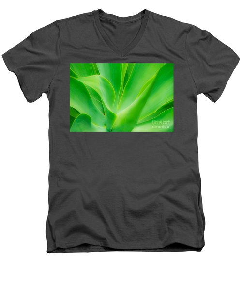 Dwarf Agave Men's V-Neck T-Shirt