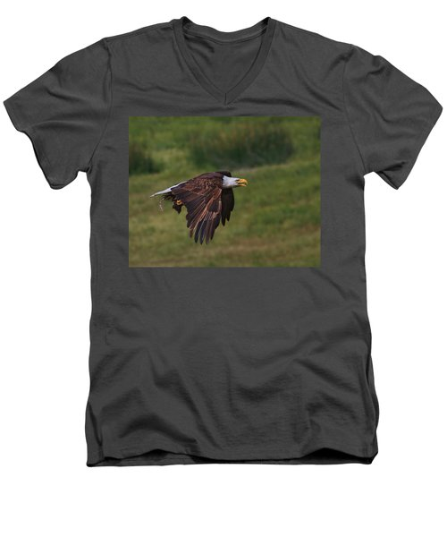 Eagle With Prey Men's V-Neck T-Shirt