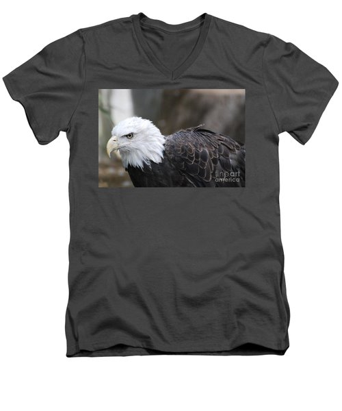 Eagle With Ruffled Feathers Men's V-Neck T-Shirt by DejaVu Designs