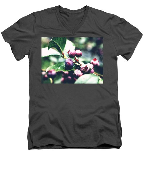 Early Blueberries Men's V-Neck T-Shirt