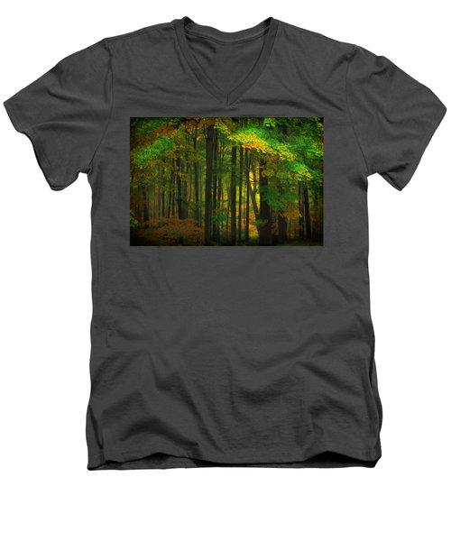 Early Fall 4 Men's V-Neck T-Shirt