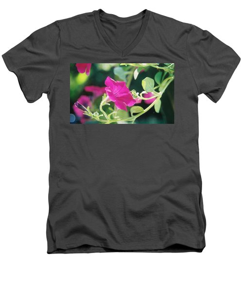 Men's V-Neck T-Shirt featuring the photograph Early Morning Petunias by Alan Lakin