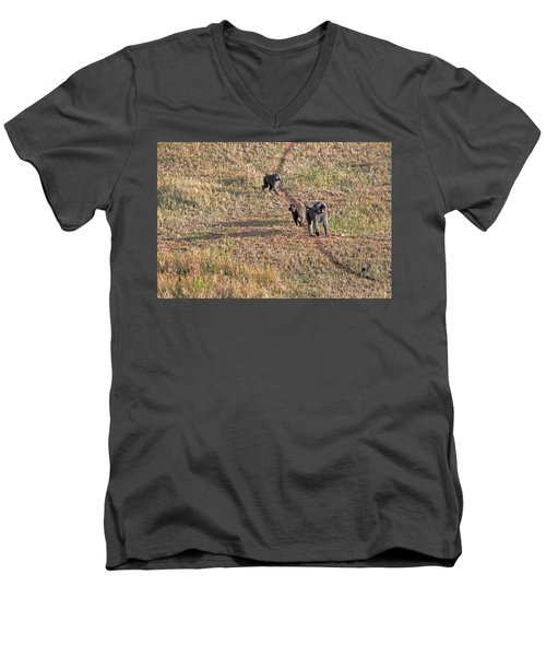 Early Morning Stroll Men's V-Neck T-Shirt by Tony Murtagh