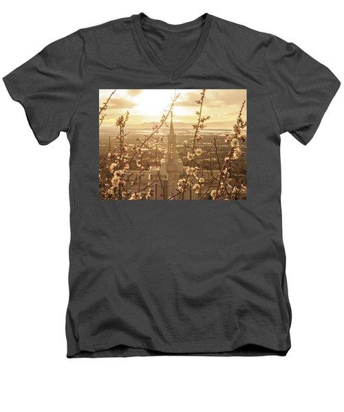 Earth Renewed Men's V-Neck T-Shirt