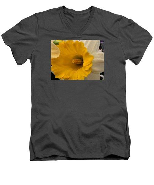 Easter 2014-3 Men's V-Neck T-Shirt by Jeff Iverson