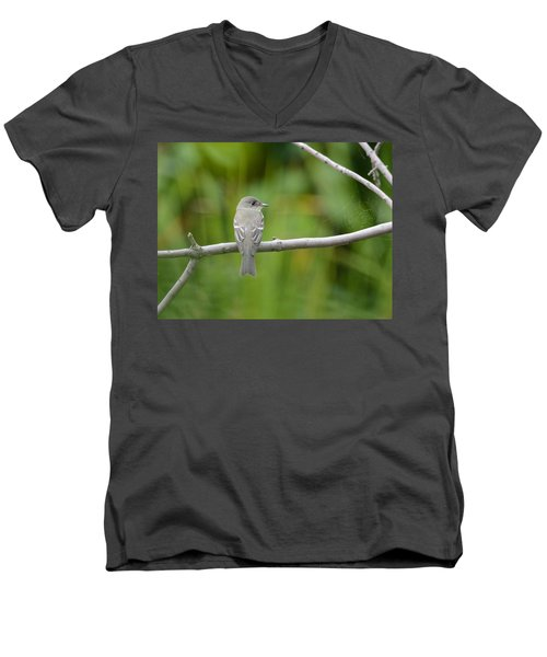 Eastern Wood Pewee Men's V-Neck T-Shirt