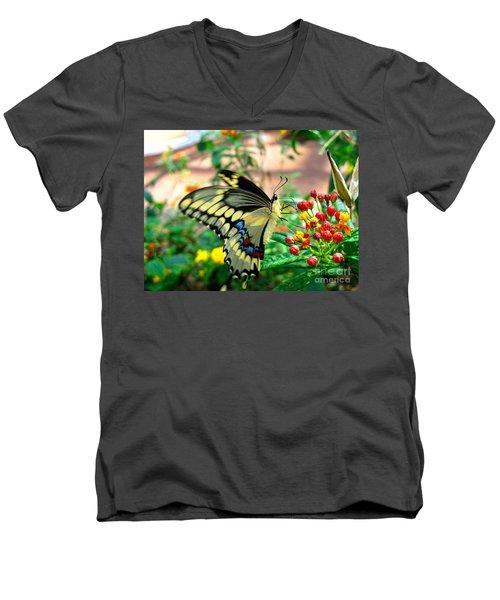 Eating On The Fly Men's V-Neck T-Shirt