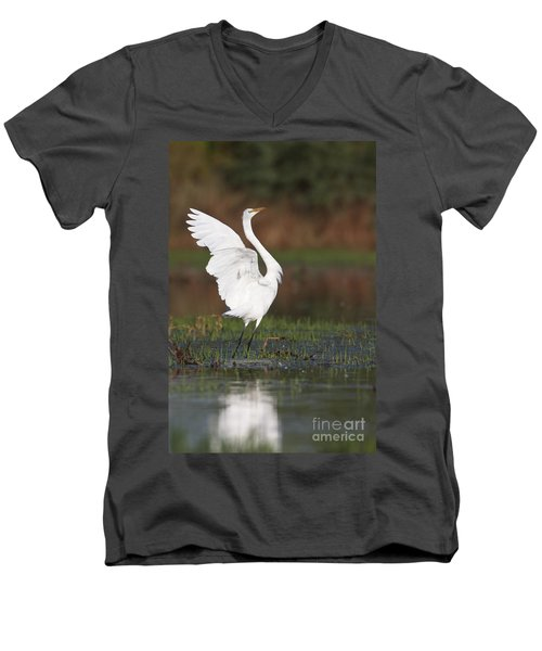 Egret Dancing Men's V-Neck T-Shirt by Bryan Keil