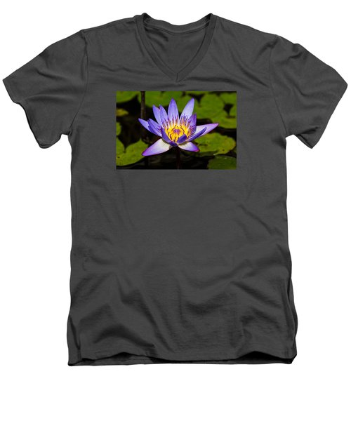 Egyptian Blue Water Lily  Men's V-Neck T-Shirt by Scott Carruthers