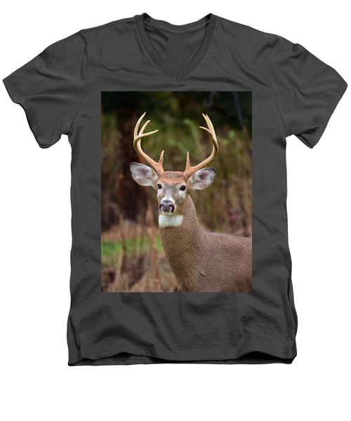 Eight Points Of Awesome Men's V-Neck T-Shirt