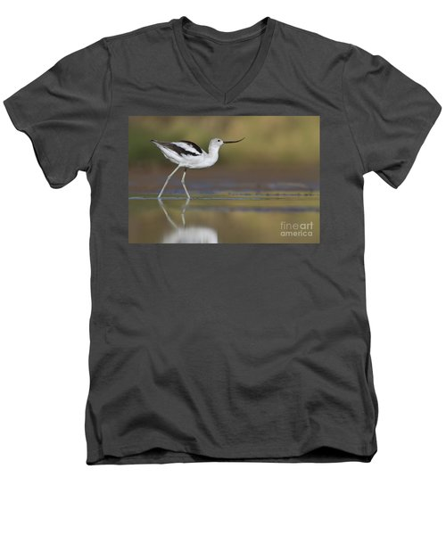 Elegant Avocet Men's V-Neck T-Shirt