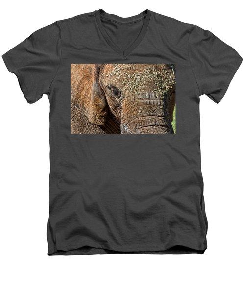 Elephant Never Forgets Men's V-Neck T-Shirt