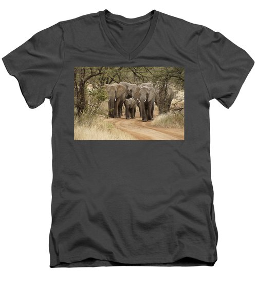 Elephants Have The Right Of Way Men's V-Neck T-Shirt