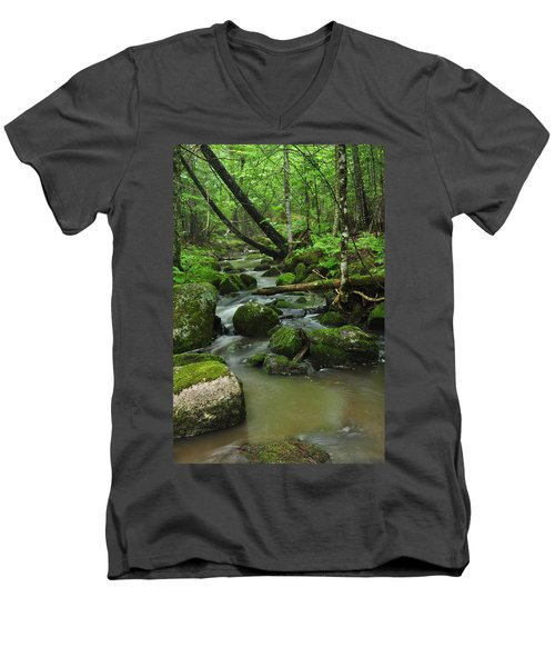 Emerald Forest Men's V-Neck T-Shirt