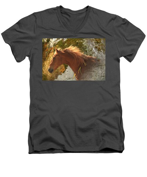 Emerging Free Men's V-Neck T-Shirt by Michelle Twohig