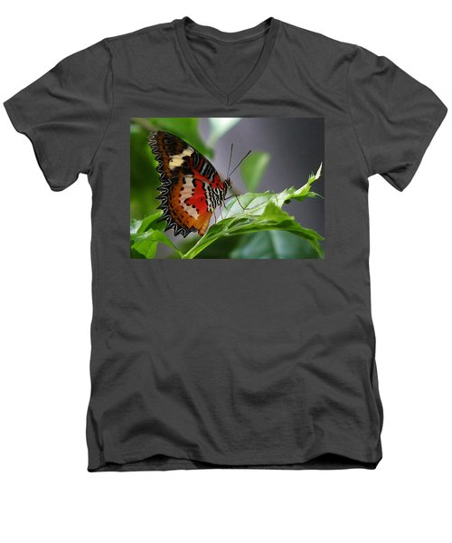 Men's V-Neck T-Shirt featuring the photograph Enchanted Butterfly by Bruce Bley