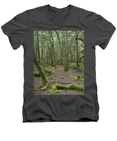 Men's V-Neck T-Shirt featuring the photograph Enchanted Forest by Hugh Smith