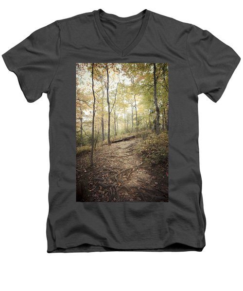 Enchanting Forest Men's V-Neck T-Shirt by Debbie Karnes