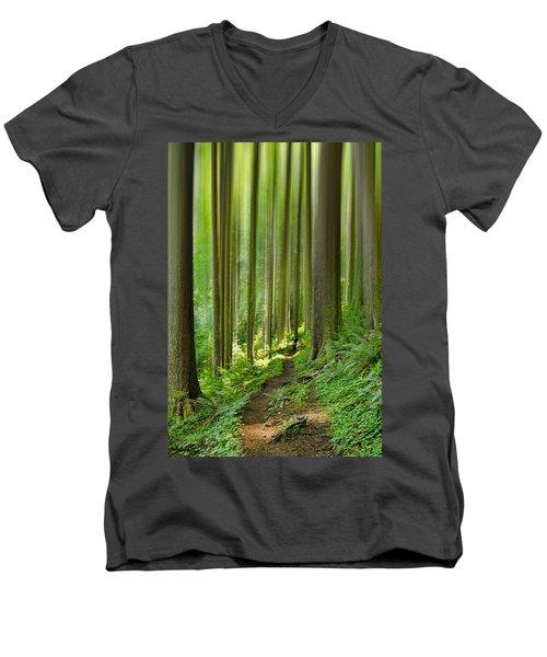Enchantment Men's V-Neck T-Shirt