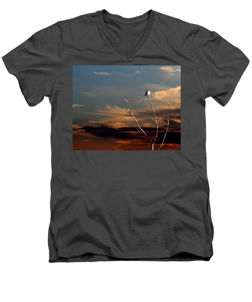 End Of The Day Men's V-Neck T-Shirt by John Freidenberg
