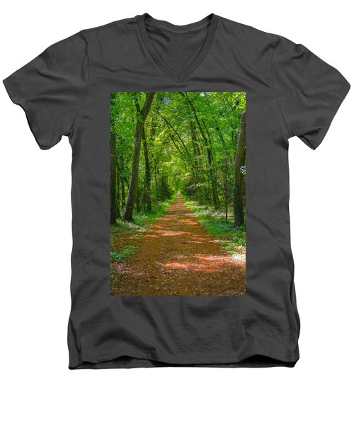 Endless Trail Into The Forest Men's V-Neck T-Shirt