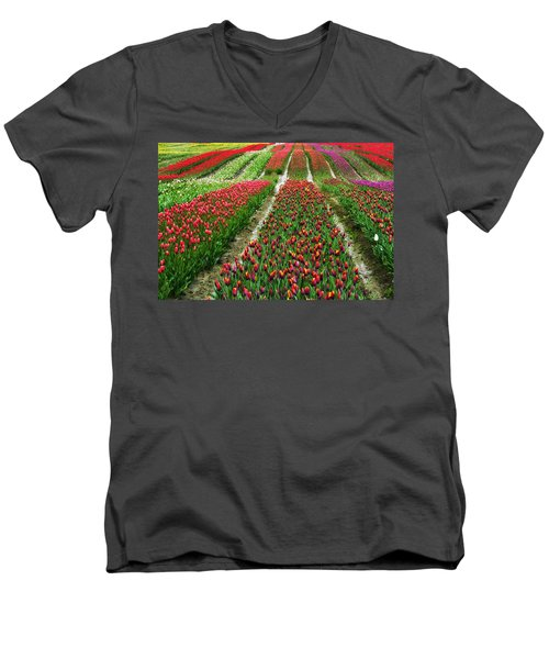 Endless Waves Of Tulips Men's V-Neck T-Shirt