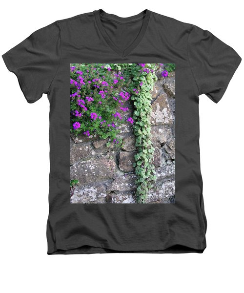 English Garden Wall Men's V-Neck T-Shirt