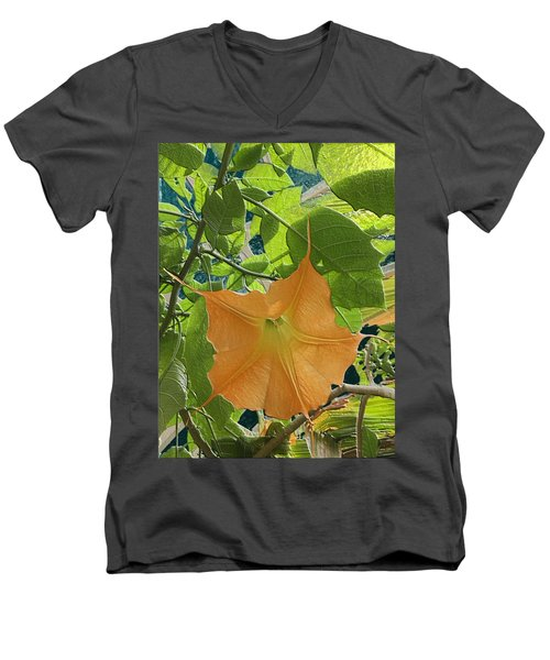 Enter The Sun Men's V-Neck T-Shirt