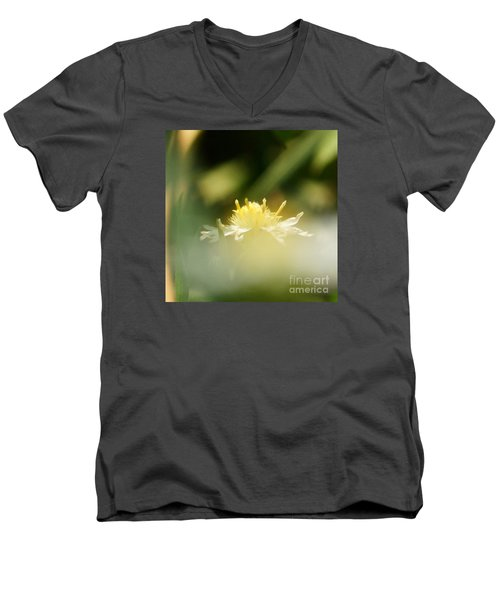 Men's V-Neck T-Shirt featuring the photograph Enwrapped In Misty Shroud by Linda Shafer