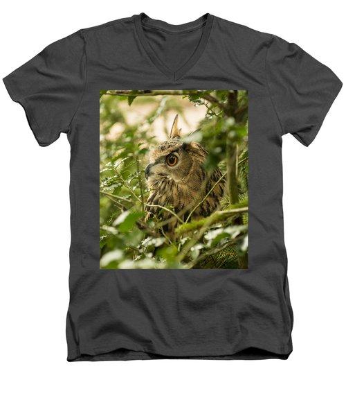 Eurasian Eagle-owl 2 Men's V-Neck T-Shirt