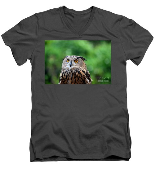 Eurasian Or European Eagle Owl Bubo Bubo Stares Intently Men's V-Neck T-Shirt by Imran Ahmed