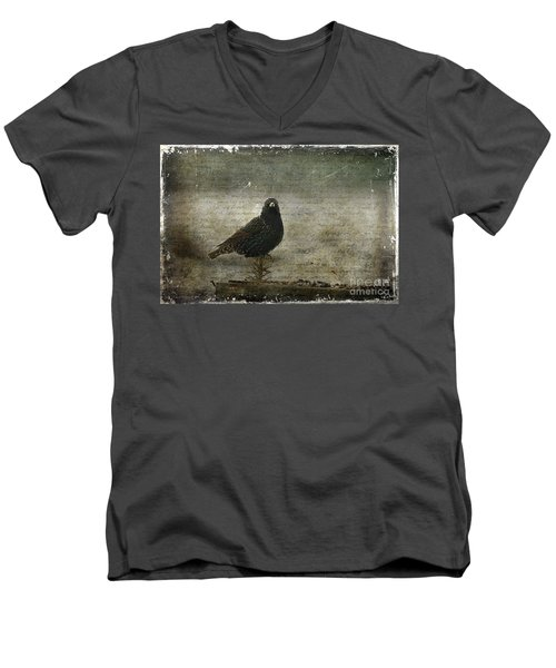European Starling Men's V-Neck T-Shirt